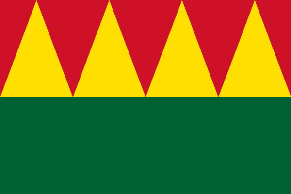 2016-flag